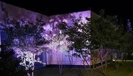 zapewniamy montaż oświetlenia ogrodowego