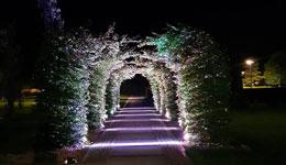 w marach naszej usługi wykonujemy projekt oświetlenia ogrodowego LED
