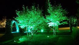 sprzedajmy wysokiej jakości oświetlenie ogrodowe wtechnologi LED